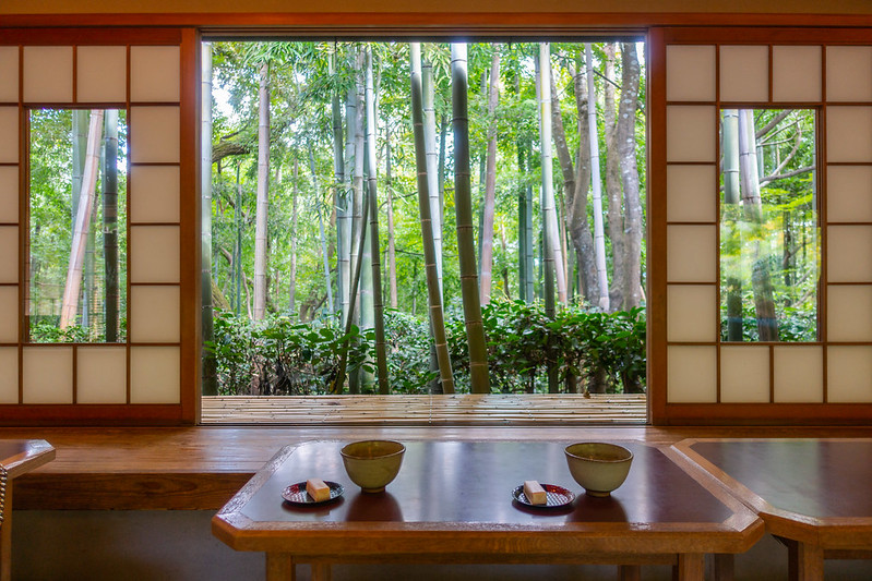Drinking matcha overlooking a bamboo forest in Kyoto, Japan