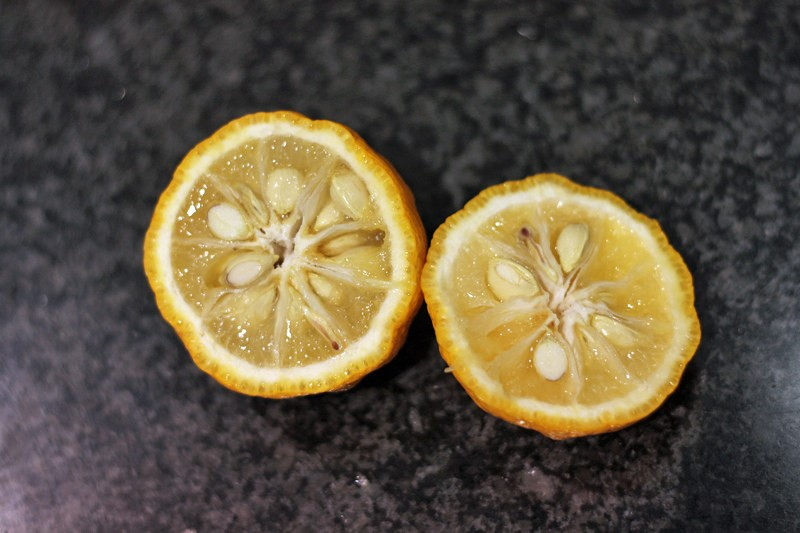 Pieces of Cut Yuzu showing multiple seeds