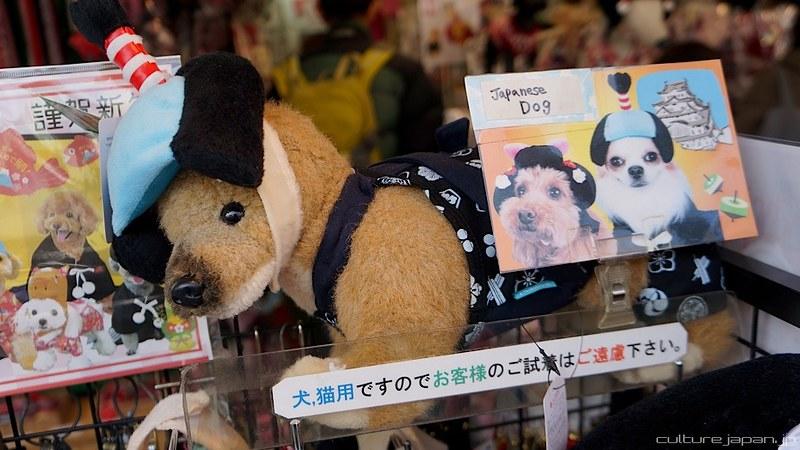 Dog in Samurai Topknot. Photo by Danny Choo on www.flickr.com.